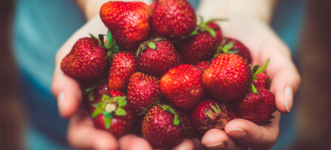 Fresas y fresones de Huelva